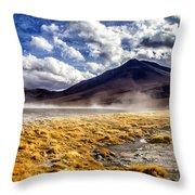 Dusty Desert Road Bolivia Throw Pillow