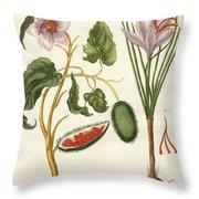 Dye Plants Throw Pillow