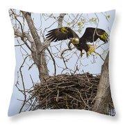 Eagle Nest Throw Pillow