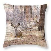 Easter Does Throw Pillow