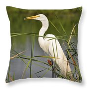 Egret In The Cattails Throw Pillow