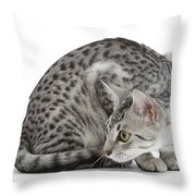 Egyptian Mau Cat Throw Pillow