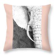 Elephant Study Throw Pillow