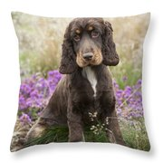 English Cocker Spaniel Puppy Throw Pillow