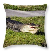 Enjoying The Sun Throw Pillow