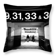 Entering The Cathedral Of Baseball Throw Pillow