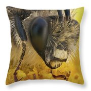 Eucera Longicornis Portrait 4.5x Throw Pillow