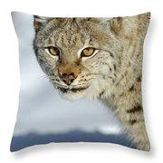 Eurasian Lynx In Snow Throw Pillow