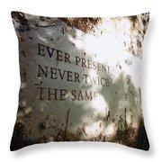 Ever Present Never Twice The Same Throw Pillow