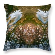 Faces In Water II Throw Pillow