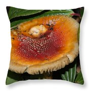 Fairy Mushrooms Throw Pillow
