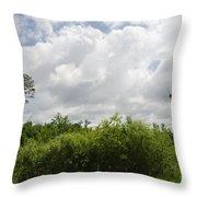 Falcon Nest 3  Throw Pillow