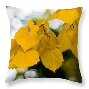 Fall Arrives Throw Pillow