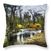 Fall Creek Throw Pillow