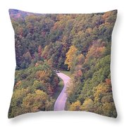 Fall Drive In The Smokies Throw Pillow