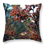 Fall Fruit Throw Pillow