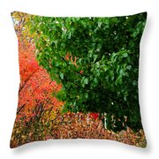 Fall Garden Throw Pillow