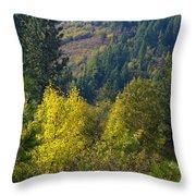 Fall In Spokane Throw Pillow