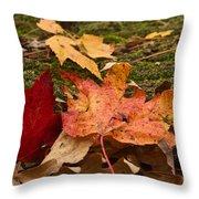 Fall Moss Carpet Throw Pillow