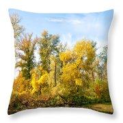 Fall On The Lake Throw Pillow