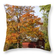 Fall View Throw Pillow