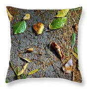 Fallen Leaves Throw Pillow by Carlos Caetano