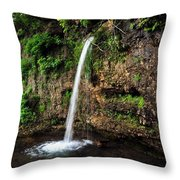 Falling Spring Throw Pillow