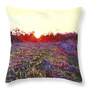 Farley Sunset Throw Pillow