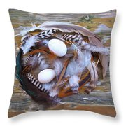 53. Feather Wreath Can Be Ordered Throw Pillow