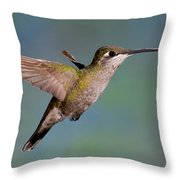 Female Magnificent Hummingbird At Flower Throw Pillow