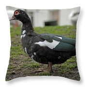 Female Muscovy Duck Throw Pillow