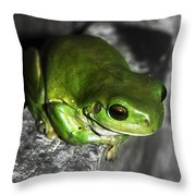 Fence Frog Throw Pillow