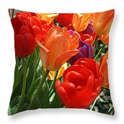Festival Of Tulips Throw Pillow