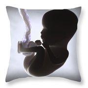 Fetus In Utero Week 15 Throw Pillow