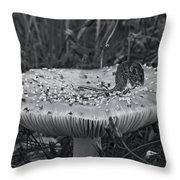 Field Mouse On Mushroom Cap  Throw Pillow