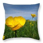Field Of Buttercups Throw Pillow