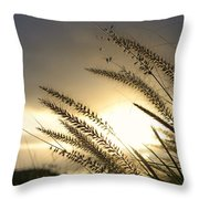 Field Of Dreams Throw Pillow by Laura Fasulo