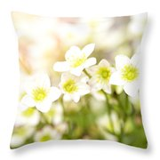 Field Of White Blossoms Throw Pillow