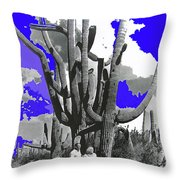 Film Homage Victor Fleming Jean Harlow Bombshell 1933 Saguaro Nat'l Monument Tucson 2008 Throw Pillow