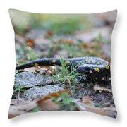 Fire Salamander Fog Droplets Throw Pillow