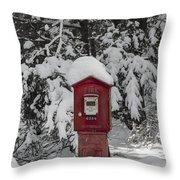 Firebox 6334 Throw Pillow