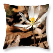 First Sign Of Spring 2 Throw Pillow