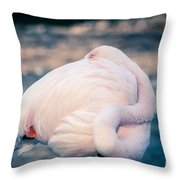 Flamingo 2b Throw Pillow