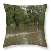 Flooded Park Throw Pillow