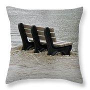 Flooded Seat  Throw Pillow