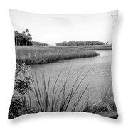 Florida Au Natural Bw Throw Pillow