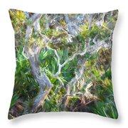 Florida Scrub Oaks Painted  Throw Pillow