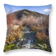 Flow V10 Throw Pillow
