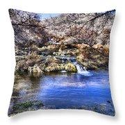 Flow V5 Throw Pillow