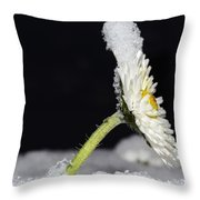 Flower With Snow Throw Pillow
